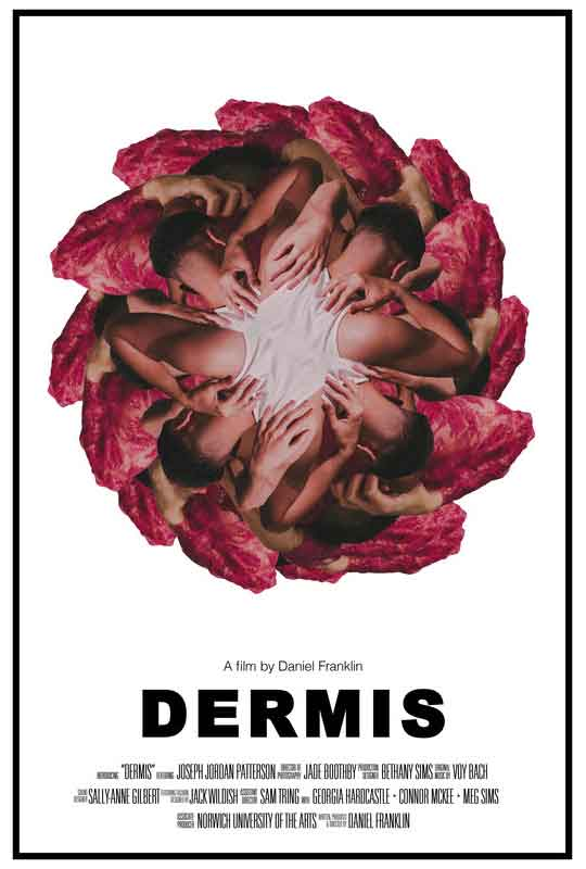 Dermis film poster